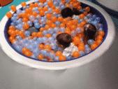 ProduitsSOFT-4-produits-bleuetassocies