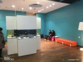 Aquarium st georges 0031